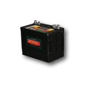Royal DC24 Semi-Sealed Maintenance Free Battery