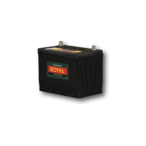 ROYAL NS60 Semi-Sealed Maintenance Free Battery